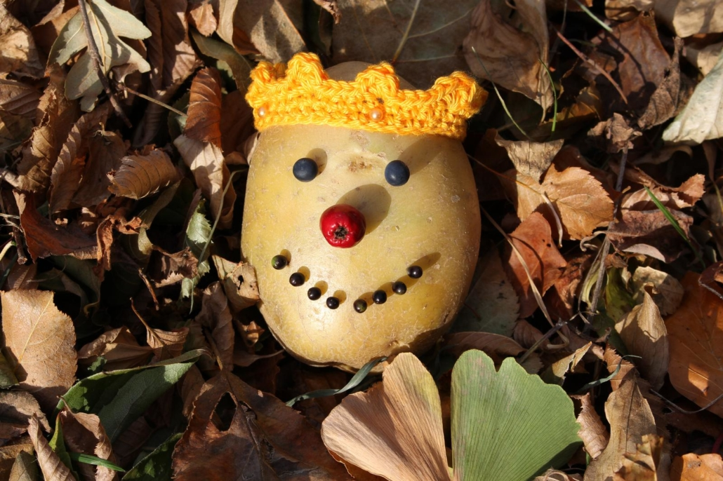 Der Kartoffelkönig