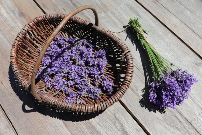 Lavendelöl|Lavendel-Salzpeeling| Lavendel-Saunasalz|Saunasalz|Lavendel|Lavandin|Naturkosmetik|DIY
