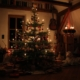 Heiligabend|Weihnachtstraditionen|Weihnachten|Familientraditionen|Christbaum|Krippe|Weihnachtsausflug