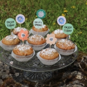 Vegane Rhabarbermuffins|Rhabarbermuffins|vegan|vegan backen|Rhabarber|Rhabarbersaison|vegane Familienküche|vegane Familienrezepte|vegane Muffins